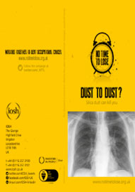 No Time To Lose - Dust To Dust